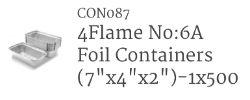 Noodle Container  1X500 (Foil A6)